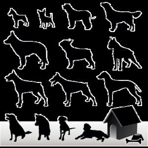 Schaubild Hunderassen